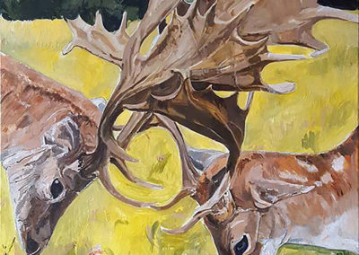 Two Stags, 2017